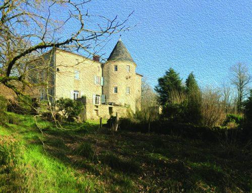 Chateau shenanigans